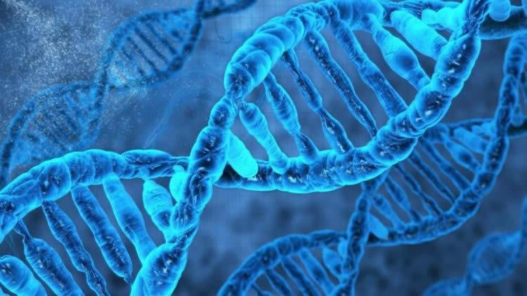 Akraba evliliği genetik testleri