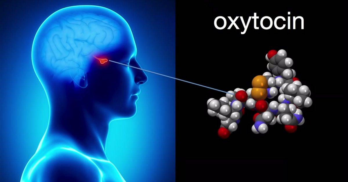 oksitosin hormonu nasıl arttırılır